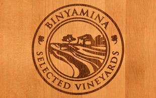 לוגו בנימינה יינות מובחרים