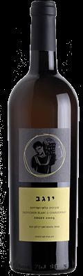 יין סוביניון בלאן שרדונה יוגב