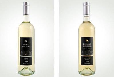 יינות וטעמים